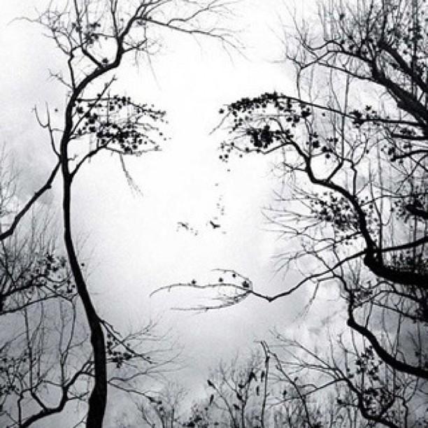 vormen een gezicht